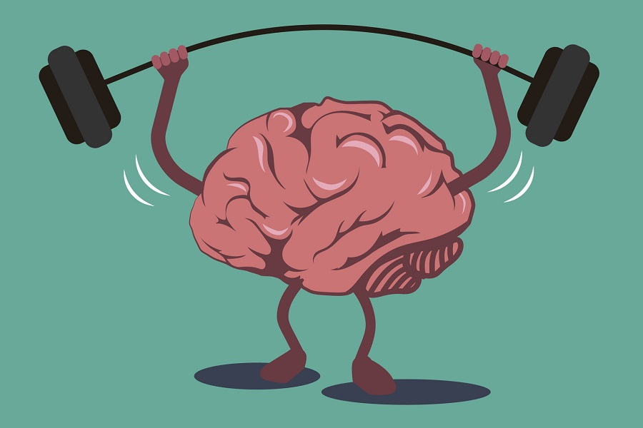 The Ultimate Guide To Brain Fitness