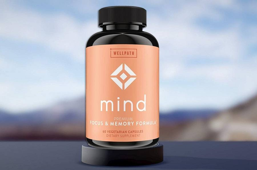 WellPath Mind Supplements Review